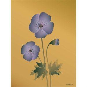 Image of   VISSEVASSE - Geranium plakat, amber - 50x70 cm