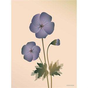 Image of   VISSEVASSE - Geranium plakat, nude - 30x40 cm